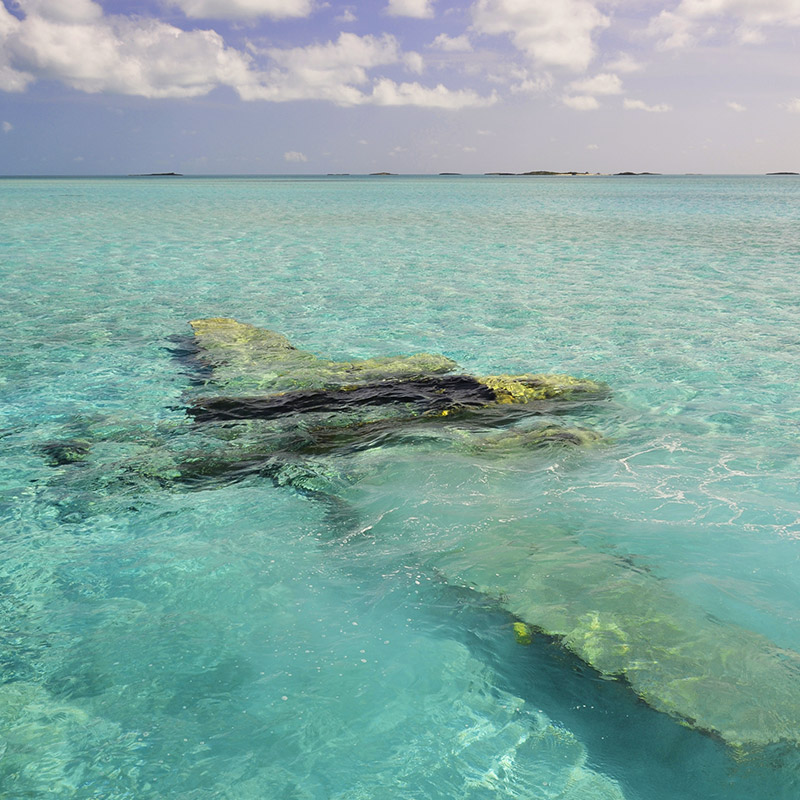 Snorkel the Sunken Drug Cartel Plane Off Norman's Cay - The Exumas