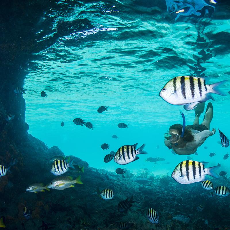 Snorkel spelunking Thunderball Grotto - The Exumas