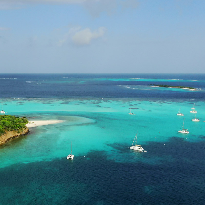 Turtle Sanctuary at the Tobago Cays - The Grenadines