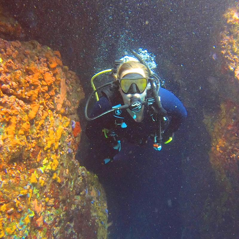 Ile de Ronde Cave - CruiseNautic